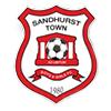 Sandhurst Town Boys & Girls FC Logo